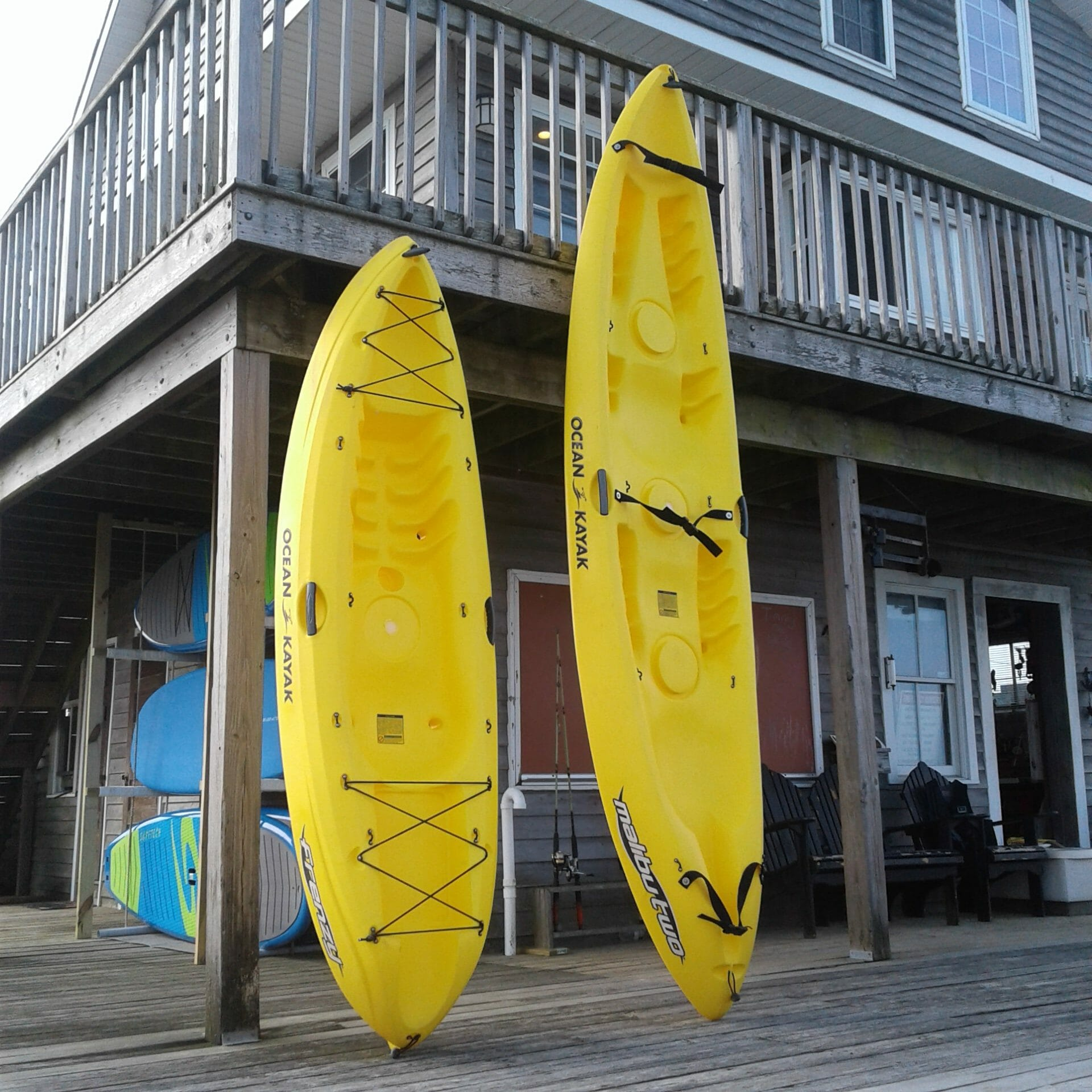 single and double kayaks at Whale Creek Marina