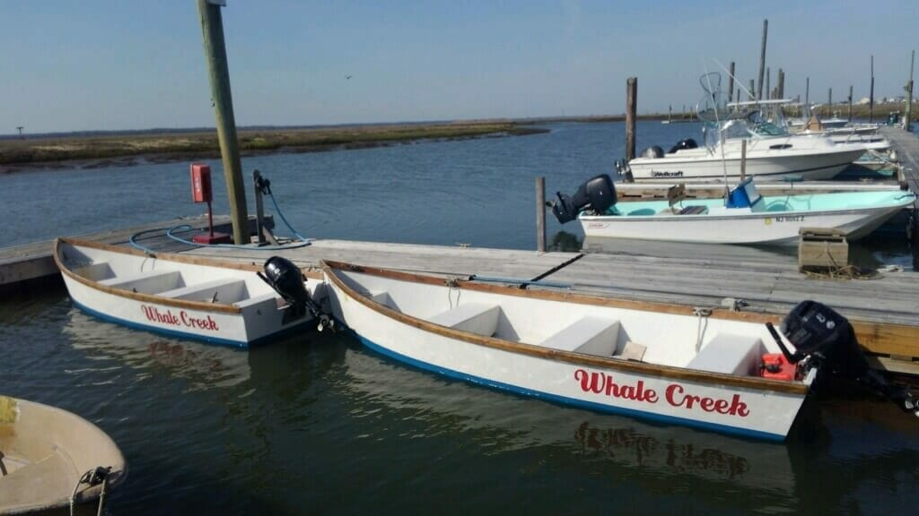 Whale Creek Marina rental boats