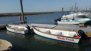Whale Creek Marina rental boats