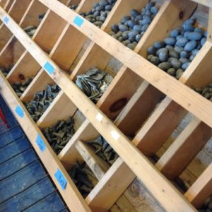 Fishing weights in open wooden rack in marina store